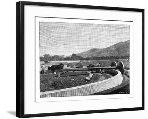 Mill for Husking Coffee, Central America, C1890--Framed Art Print