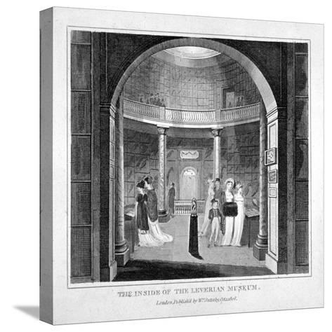 Interior View of the Leverian Museum, Albion Place, Southwark, London, 1806--Stretched Canvas Print