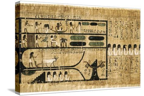 Ancient Egyptian Book of the Dead on Papyrus Showing Written Hieroglyphs--Stretched Canvas Print