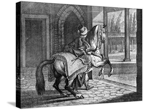 Turkish Sultan's Arabian Saddle Horse, 1722--Stretched Canvas Print