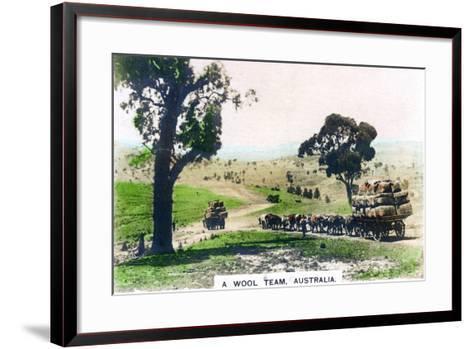A Wool Team, Australia, C1920S--Framed Art Print