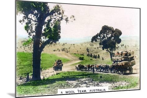 A Wool Team, Australia, C1920S--Mounted Giclee Print