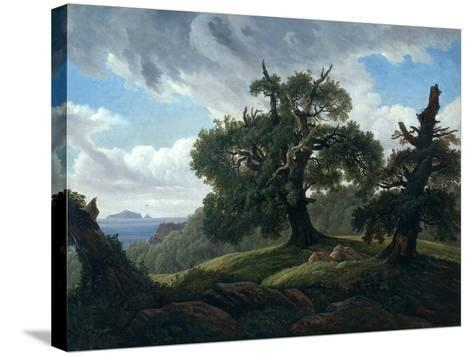 Memory of a Wooded Island in the Baltic Sea (Oak Trees by the Se), 1835-Carl Gustav Carus-Stretched Canvas Print