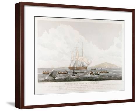 South Sea Whale Fishery, 1825-John Huggins-Framed Art Print