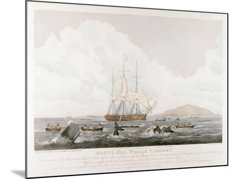South Sea Whale Fishery, 1825-John Huggins-Mounted Giclee Print