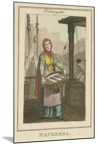 Mackerel , Cries of London, 1804-William Marshall Craig-Mounted Giclee Print