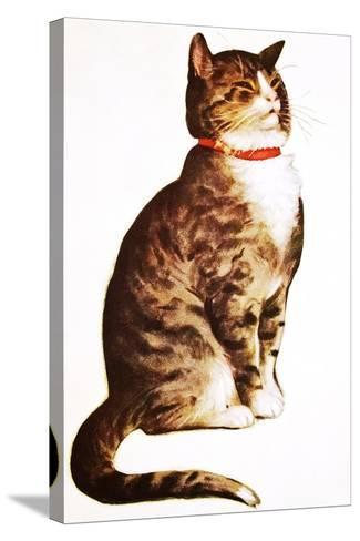 Chester Peake-Charles Bracker-Stretched Canvas Print