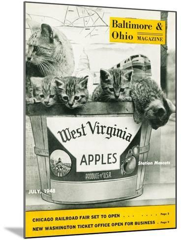 West Virginia Apples--Mounted Giclee Print