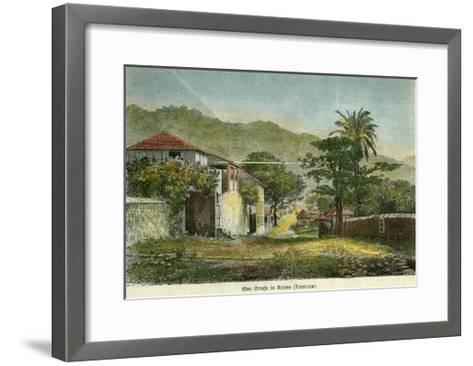 A Street in Roseau, Dominica, C1880- Pann-Framed Art Print
