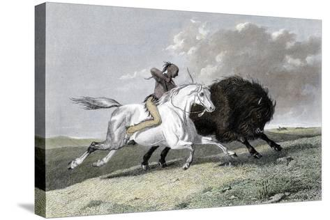 North American Indian Hunting Buffalo, 1861--Stretched Canvas Print