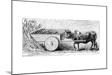 Reconstruction of Reaping Machine Used in Gaul in Ancient Roman Times, as Described by Pliny, C1890--Mounted Giclee Print