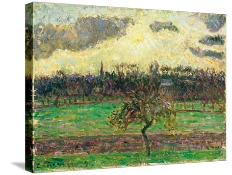 The Meadows at Éragny, Apple Tree, 1894-Camille Pissarro-Stretched Canvas Print