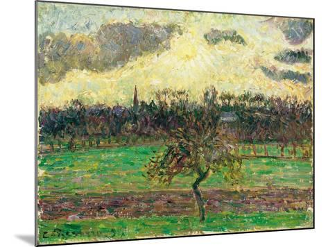 The Meadows at Éragny, Apple Tree, 1894-Camille Pissarro-Mounted Giclee Print
