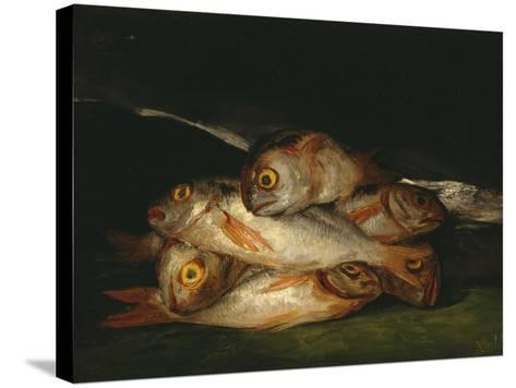Still Life with Golden Bream, 1808-1812-Francisco de Goya-Stretched Canvas Print