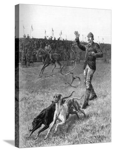 Coursing: Slipping the Greyhounds, 1887-Stephen T Dadd-Stretched Canvas Print
