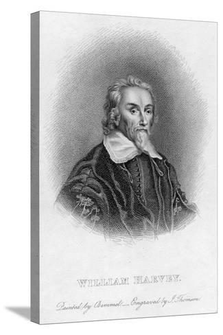 William Harvey (1578-165) English Physician, C17th Century--Stretched Canvas Print