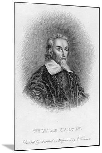 William Harvey (1578-165) English Physician, C17th Century--Mounted Giclee Print