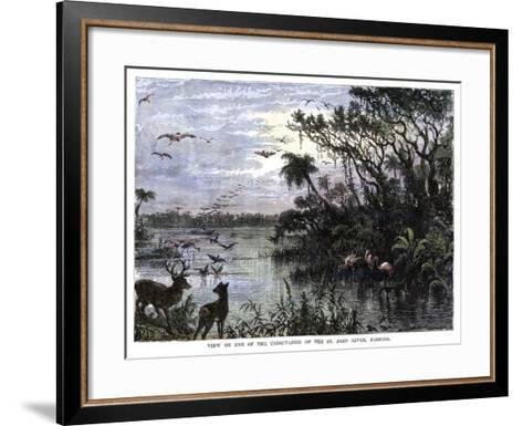 View on One of the Tributaries of the St John River, Florida, 19th Century--Framed Art Print