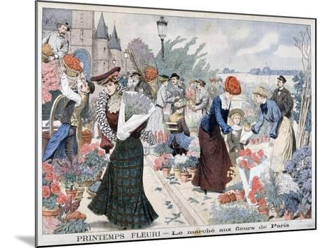Spring Flowers in a Market, Paris, 1903--Mounted Giclee Print