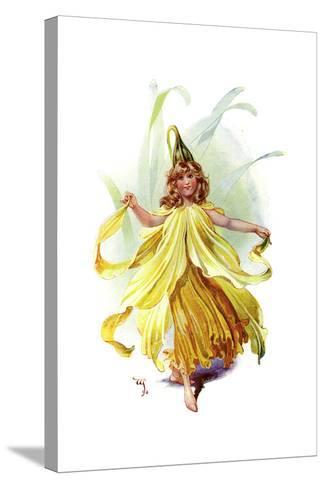 The Daffodil, 1899-C Wilhelm-Stretched Canvas Print
