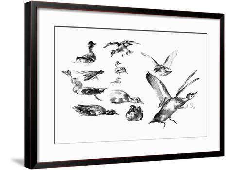 Wild Ducks, 1901-Felix Braquemond-Framed Art Print