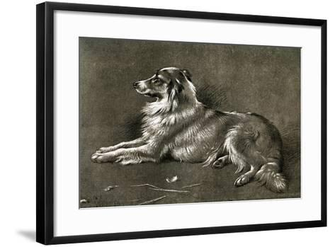 A Sheep Dog, 1901-Walter Hunt-Framed Art Print
