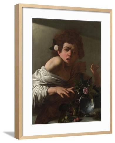 Boy Bitten by a Lizard, Ca 1595-Caravaggio-Framed Art Print