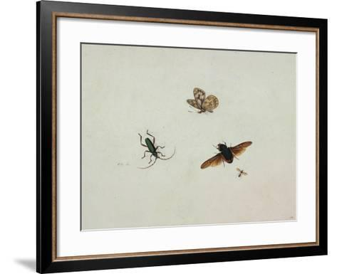 Four Insects, End of 17th C-Johannes Bronkhorst-Framed Art Print