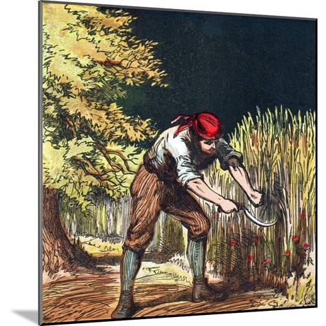 Reaper Beginning to Cut Crop of Wheat with a Sickle, 1867--Mounted Giclee Print