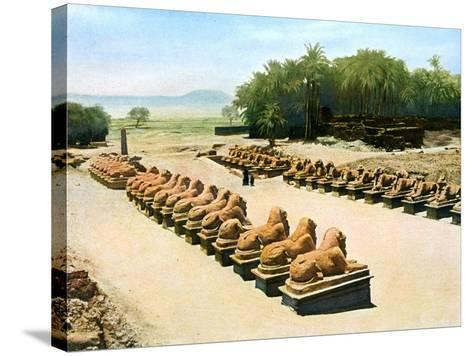 Avenue of Ram-Headed Sphinxes, Temple of Amun-Re, Karnak, Luxor, Egypt, 20th Century--Stretched Canvas Print
