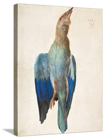 Dead Blue Roller, 1500 (Or 151)-Albrecht D?rer-Stretched Canvas Print