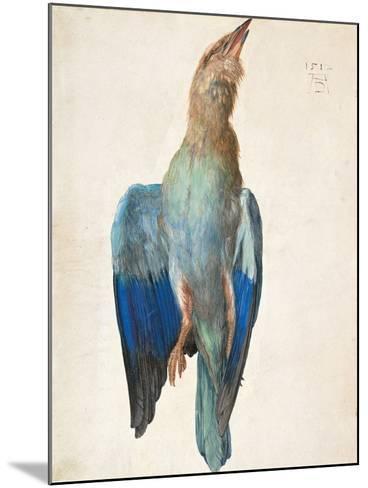Dead Blue Roller, 1500 (Or 151)-Albrecht D?rer-Mounted Giclee Print