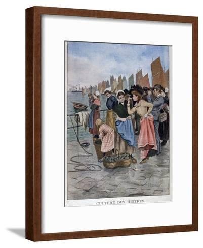 Oyster Seller, 1902--Framed Art Print
