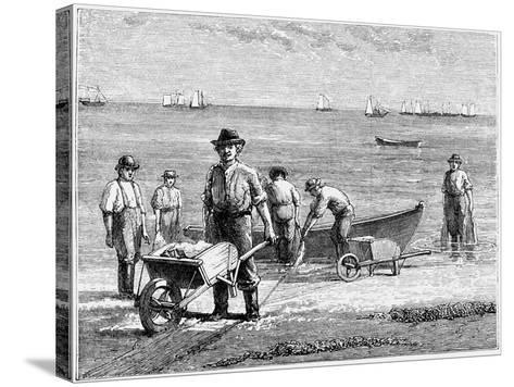 Cape Cod Fisherman Washing Fish, 1875--Stretched Canvas Print