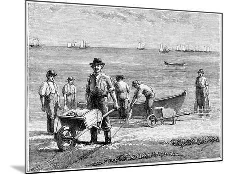 Cape Cod Fisherman Washing Fish, 1875--Mounted Giclee Print