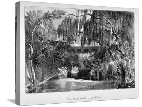 View of a Waterfall and Two Swans in Hyde Park, London, C1820--Stretched Canvas Print