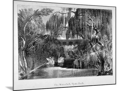 View of a Waterfall and Two Swans in Hyde Park, London, C1820--Mounted Giclee Print