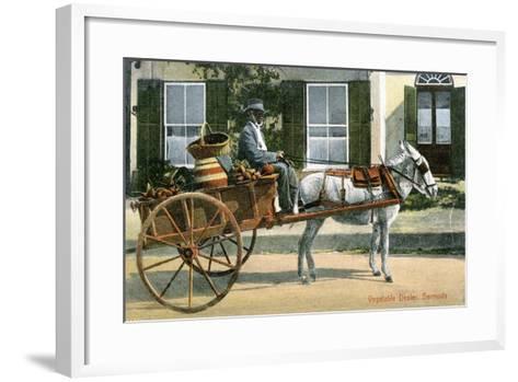 A Vegetable Dealer, Bermuda, C1900s--Framed Art Print