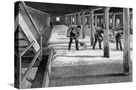 Malting Floor in an American Brewery, 1885--Stretched Canvas Print
