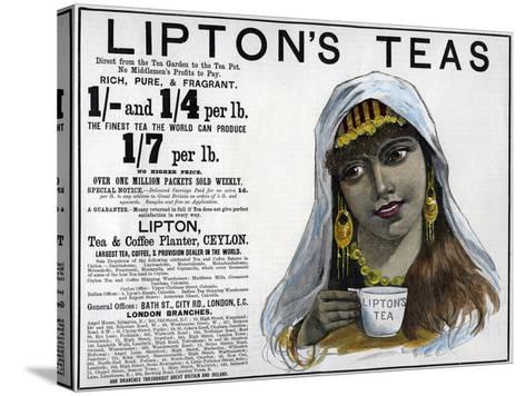 Lipton's Teas Advertisement, 1893--Stretched Canvas Print