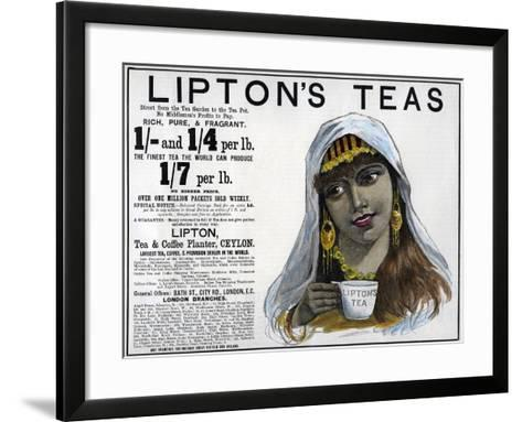 Lipton's Teas Advertisement, 1893--Framed Art Print