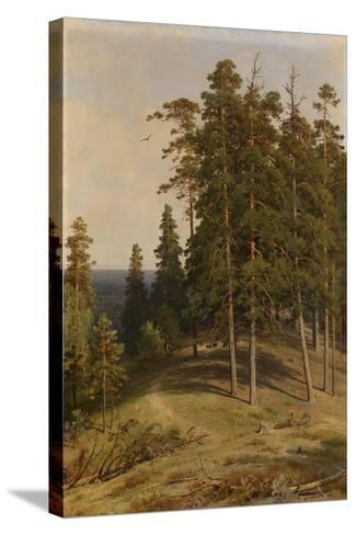 The Pine Forest, 1895-Ivan Ivanovich Shishkin-Stretched Canvas Print