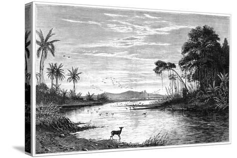 A River Scene in Venezuela, 1877--Stretched Canvas Print