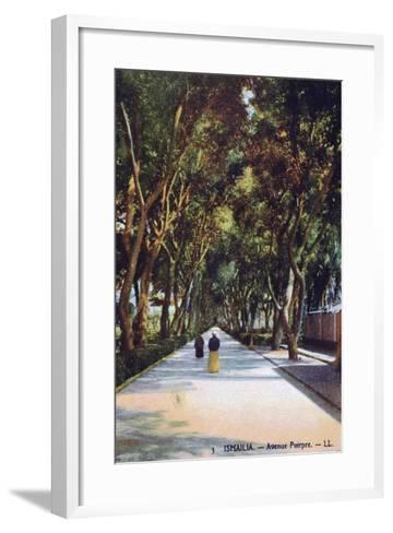 Avenue Poirpre, Ismailia, Egypt, C1900--Framed Art Print