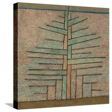 Pine Tree, 1932-Paul Klee-Stretched Canvas Print