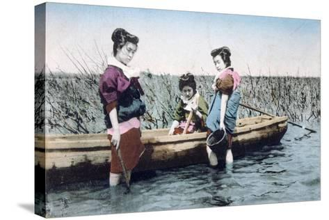 Vintage French Postcard, C1900--Stretched Canvas Print