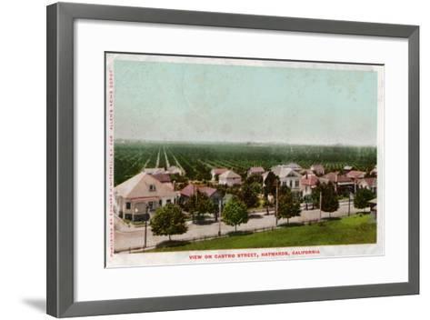 Castro Street, Hayward, California, 1905--Framed Art Print