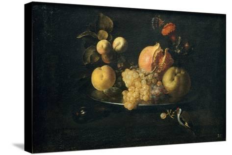 Still Life with Fruit and Goldfinch-Juan de Zurbarán-Stretched Canvas Print