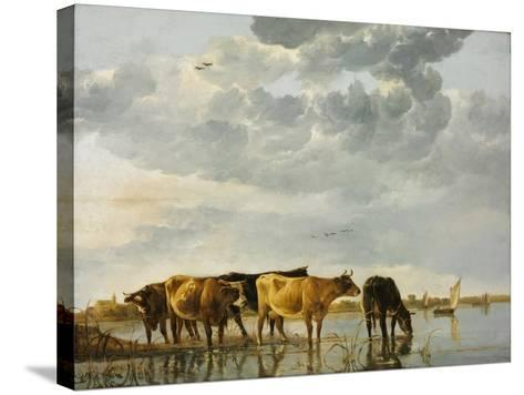 Cows in a River-Aelbert Cuyp-Stretched Canvas Print