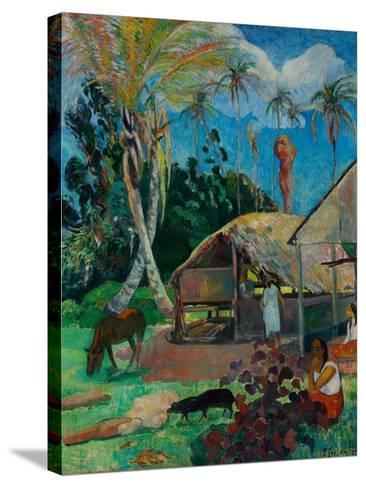 The Black Pigs-Paul Gauguin-Stretched Canvas Print